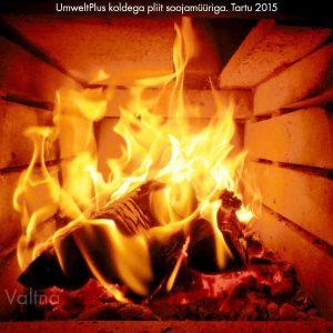 Pilukolle pilukoldega UmweltPlus pliit soojamüüriga